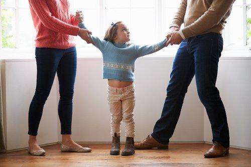 Child Custody Case